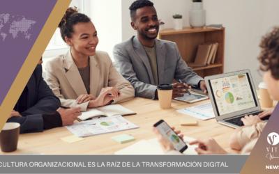 La cultura organizacional es la raíz de la Transformación Digital